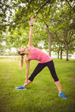 Integrale della donna che si esercita mentre stando sull'erba Fotografie Stock