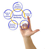 Integrated Marketing Stock Photography