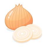 Inteiro vegetal das cebolas e cortado Imagem de Stock Royalty Free