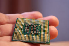 Intel cpu op hand, Pentium 4 Stock Afbeelding