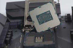Intel LGA CPU-hålighet 1151 på moderkortdatorPC med CPU-processorn Arkivbilder