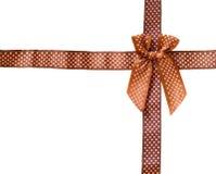Intelaiatura a scatola brillante della griglia di marrone del nastro (arco) isolata su backgr bianco Fotografie Stock