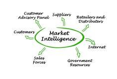 Inteligência de mercado ilustração do vetor