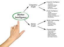 Inteligência de mercado ilustração royalty free