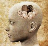 Inteligência emocional ilustração stock