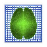Inteligencia artificial AI y concepto de alta tecnología Cerebro que brilla intensamente verde sobre el microchip azul aislado en Fotografía de archivo libre de regalías