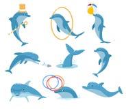 Inteligentny zwierzę jest delfinem ilustracji