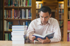 Intellectual attractive man reading concentrated a book Stock Photos
