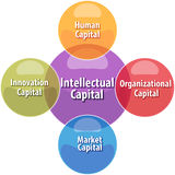 Intellectual capital business diagram illustration Royalty Free Stock Photography
