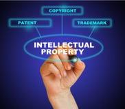 Intellectual property Stock Photo
