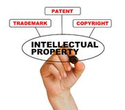 Intellectual property. Presentation of protection of intellectual property Royalty Free Stock Photography