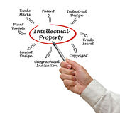 Intellectual Property Stock Image