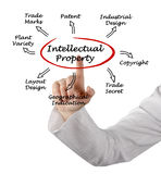 Intellectual Property Royalty Free Stock Photography