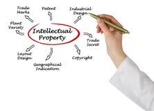 Intellectual Property Stock Photos