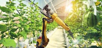 Intelligence artificielle Pollinisez des fruits et légumes photo stock