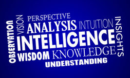 Intelligence Business Knowledge Information Words Royalty Free Stock Photography