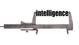 Intelligence Stock Photography