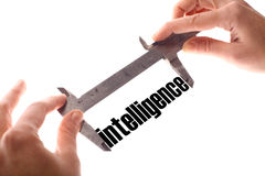 Intelligence Royalty Free Stock Photography