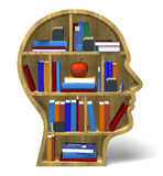 Intelligence 3D. Bookcase books concepts face dimensional Royalty Free Stock Image