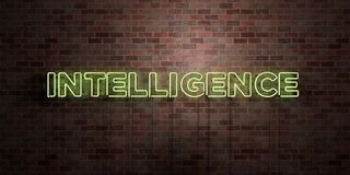 INTELLIGENCE - fluorescent Neon tube Sign on brickwork - Front view - 3D rendered royalty free stock picture Royalty Free Stock Images