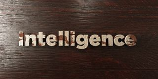 Intelligence - grungy wooden headline on Maple  - 3D rendered royalty free stock image Stock Images