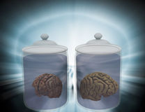 Intelligence in jar. Stock Photography