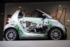Intelligent avec la peinture de panda Photo libre de droits