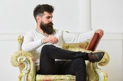 Intelligent concept. Lecturer smart sit on armchair and reads book, white wall background. Man with beard and mustache. Spends leisure with book. Scientist Stock Image