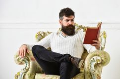 Intelligent concept. Scientist, professor on pensive face enjoys literature. Man with beard and mustache spends leisure. With book. Lecturer smart sit on stock photo