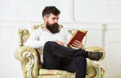 Intelligent concept. Scientist, professor on pensive face explores literature. Man with beard and mustache sits on. Armchair and reads book, white wall stock photos