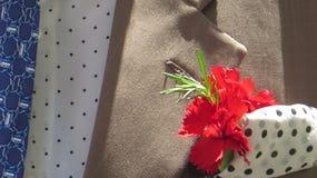 Intelligent gekleideter Mann mit roter Gartennelke lizenzfreie stockfotos