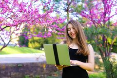 Intelligent female person using laptop in blooming background. Intelligent girl working with laptop in blooming park background. Concept of modern , wirelees Stock Photo