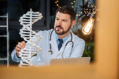 Intelligent handsome scientist doing a research. Genetic science. Intelligent handsome male scientist looking at the DNA model and doing a research while Stock Images