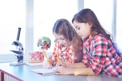 Diligent quick witted students writing the test. Intelligent ladies. Analytical talented hardworking girls attending school and helping each other while working royalty free stock photo