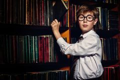 Intelligent in library Stock Images
