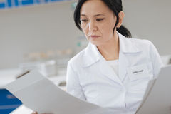 Intelligent serious woman reading reports. Important documents. Intelligent nice serious woman holding some reports and reading them while working in the royalty free stock photo