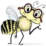 Intelligente Bienen-Karikatur Stockfoto