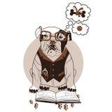 Intelligente Bulldogge Lizenzfreie Stockbilder