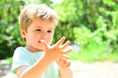 Intelligente Kinderzählungsfinger Der Junge ist fünf Jahre alt Ein schönes Kind zeigt seine Hand, eine kleine Palme Nettes Kind a stockfotos