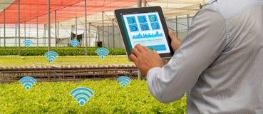 Intelligenter Industrieroboter 4 Iot 0 Landwirtschaftskonzept, industrieller Agronom, der Landwirt, der Tablette verwendet, um zu stockfoto
