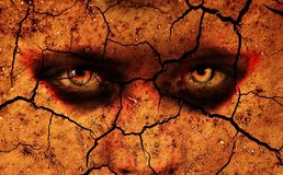 Intense eyes looking out from cracked ground. A pair of intense looking eyes gazes out from sun scorched cracked ground Royalty Free Stock Image