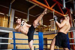 Intense Fight in Boxing Ring Stock Image