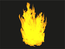 Intense fire burning Stock Images