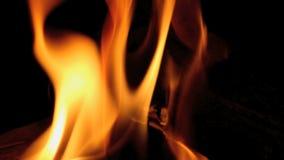 Intense Fire scene stock footage