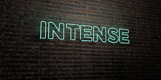 INTENSE -Realistic Neon Sign on Brick Wall background - 3D rendered royalty free stock image. Can be used for online banner ads and direct mailers Royalty Free Stock Photography