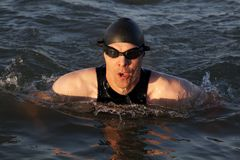 Intense swimmer Royalty Free Stock Images