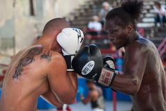 Intensity. Boxing in Havana, Cuba.  Intense moments before the strike Royalty Free Stock Photo