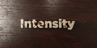 Intensity - grungy wooden headline on Maple  - 3D rendered royalty free stock image. This image can be used for an online website banner ad or a print postcard Stock Image