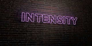 INTENSITY -Realistic Neon Sign on Brick Wall background - 3D rendered royalty free stock image. Can be used for online banner ads and direct mailers Royalty Free Stock Images