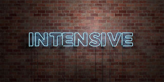 INTENSIVE - fluorescent Neon tube Sign on brickwork - Front view - 3D rendered royalty free stock picture. Can be used for online banner ads and direct mailers Stock Photo